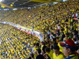 The sea of yellow to our right.