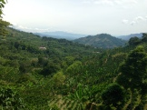 The view from Finca Los Ángeles.